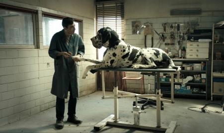5422-dogman-hd-01.jpg